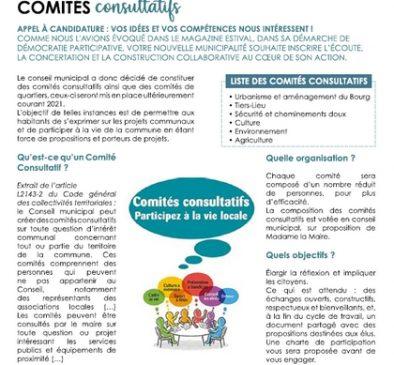 13 11 2020 COMITES CONSULTATIFS MAIRIE LE PORGE LE MAG #2