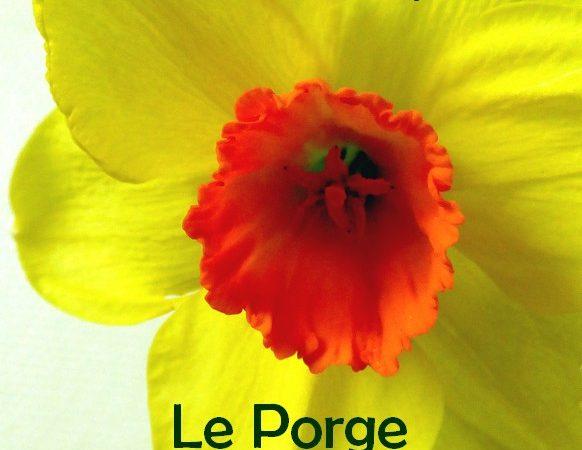 Le printemps des Jardins partagés Le Porge 1